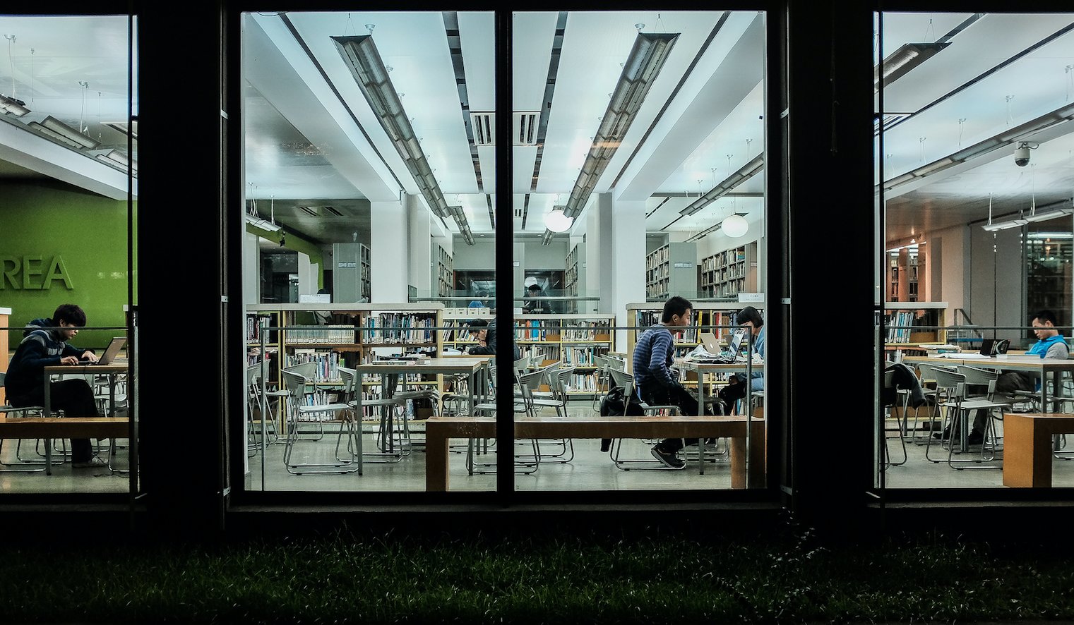 Students working in a library. Image by Matthias Ripp